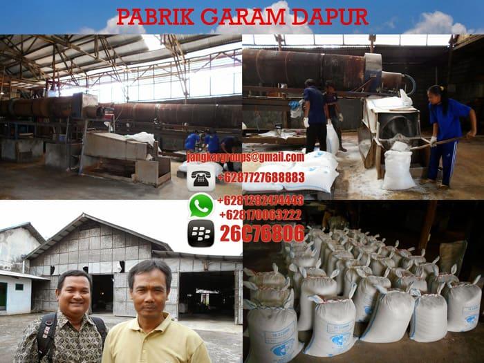 pabrik garam dapur 555