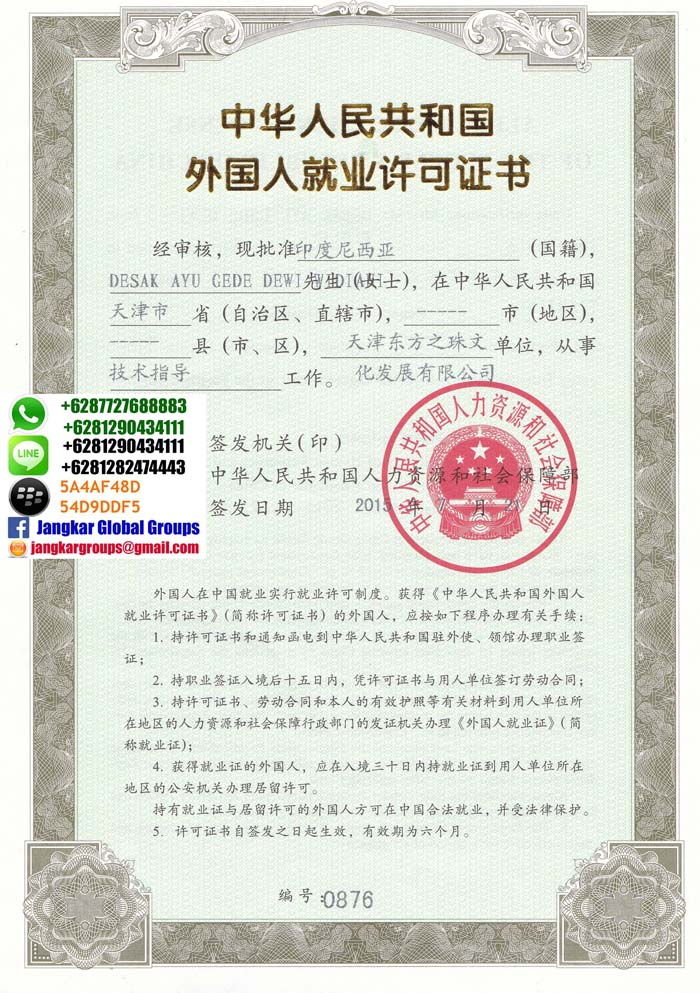 visa kerja china