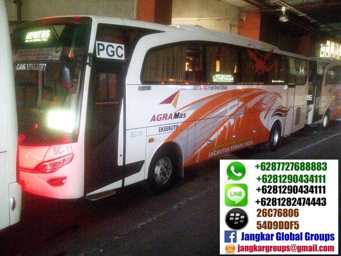 bus agra mas airport