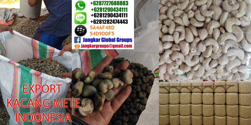 export cashew nuts