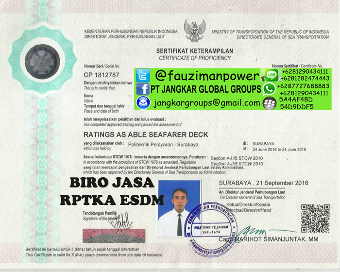 sertifikat tki pendamping