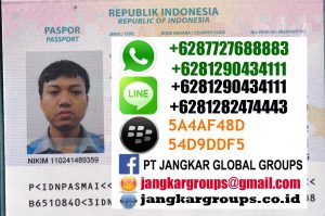 pasport jepang