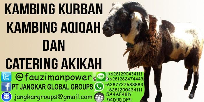 penjual kambing aqiqah dan catering akikah kandanghaur indramayu