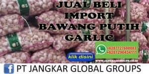 JUAL BELI IMPORT BAWANG PUTIH GARLIC