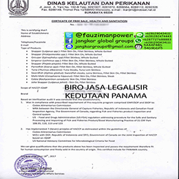 certificate-Free-Of-Health